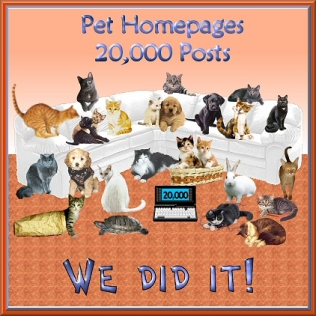 pets20000announcement.jpg