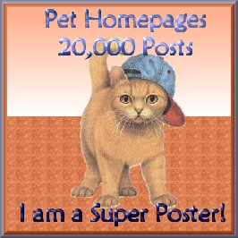 superposter20000cathat.jpg